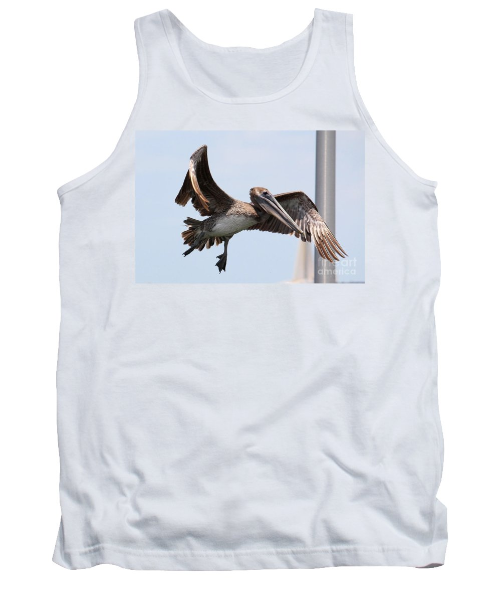 Brown Pelican Tank Top featuring the photograph Airborne Brown Pelican by Carol Groenen