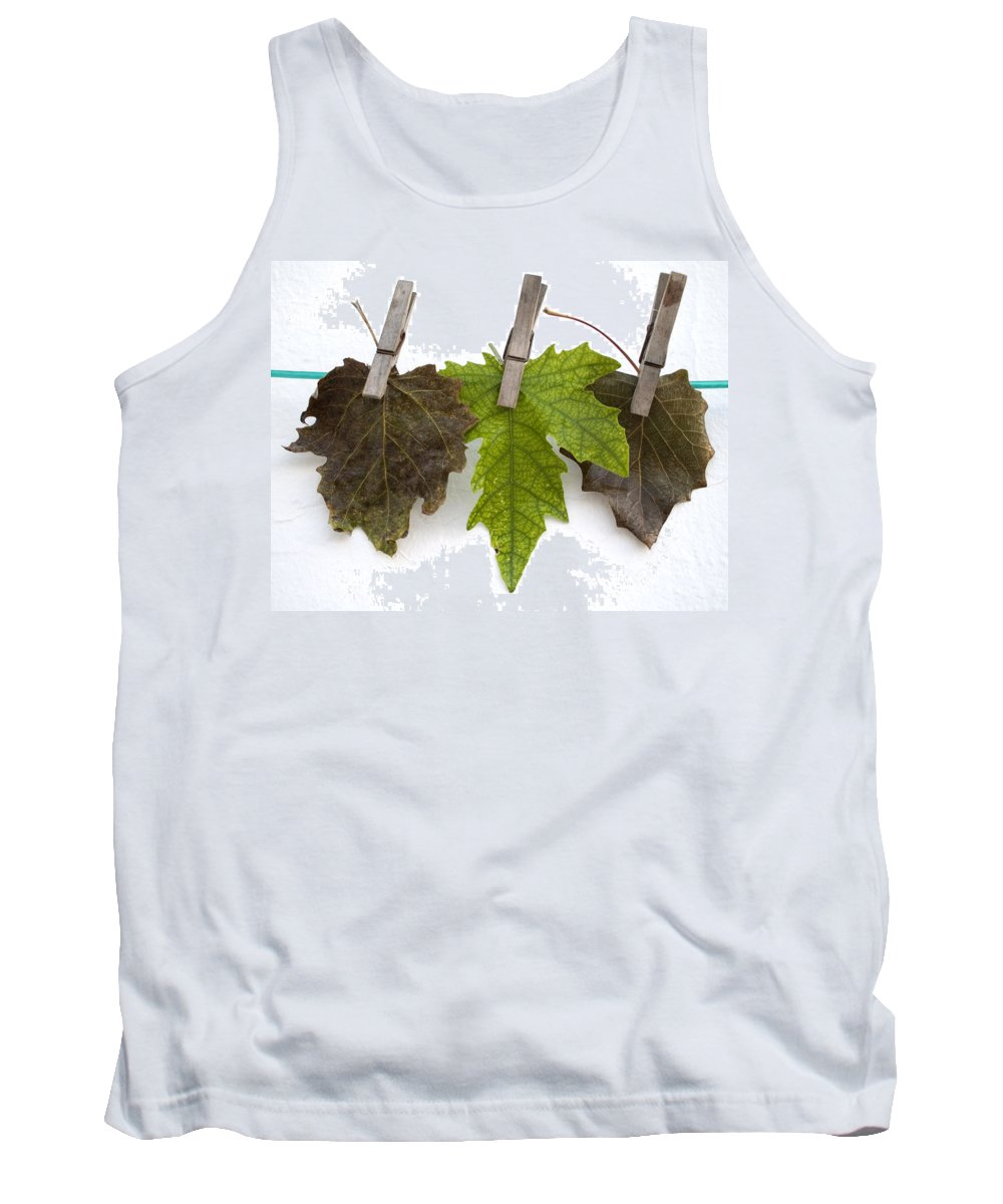 Nobody Tank Top featuring the photograph autumm is hanged out - Autumn color leaves by Pedro Cardona Llambias