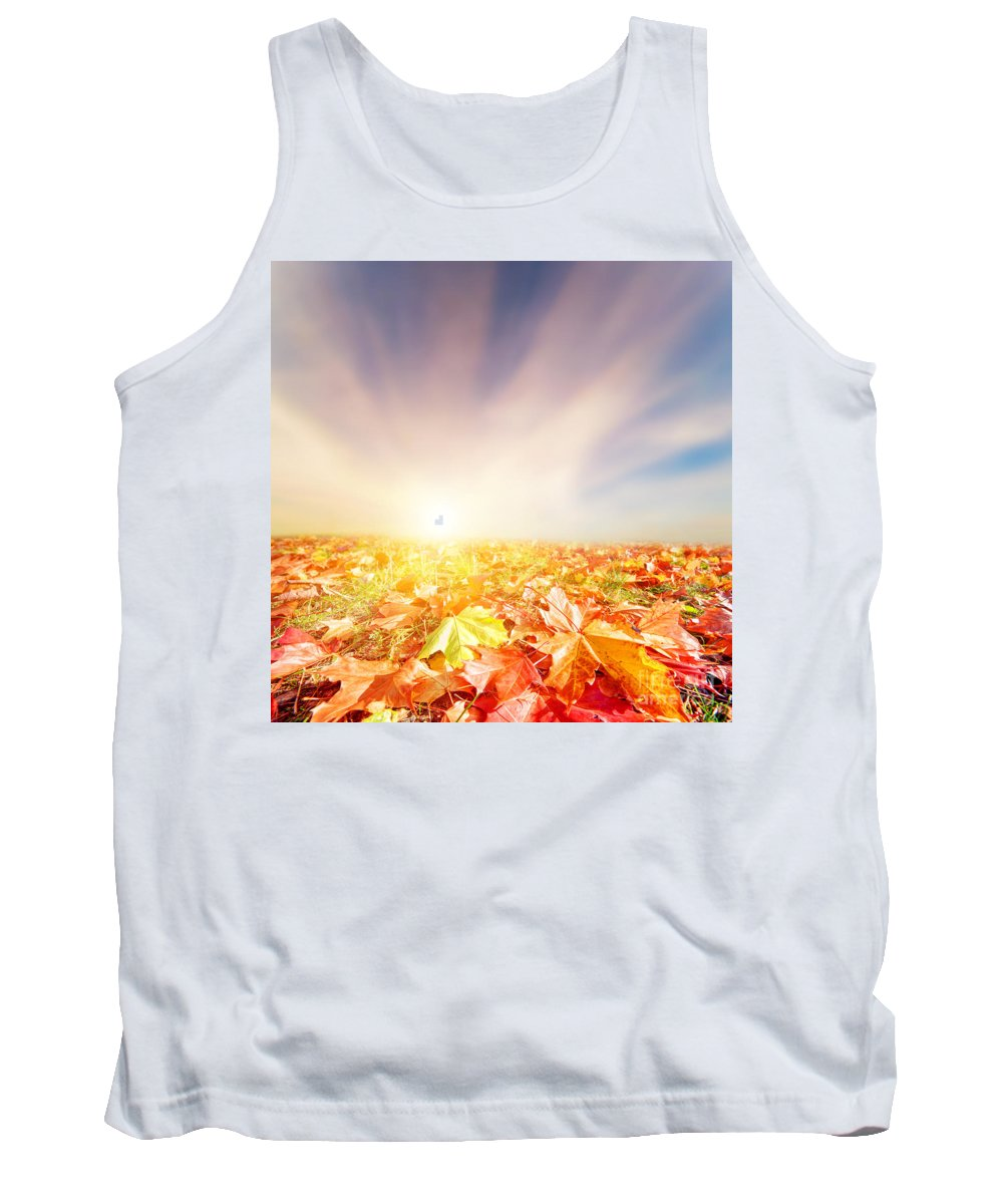 Autumn Tank Top featuring the photograph Autumn Fall Landscape by Michal Bednarek