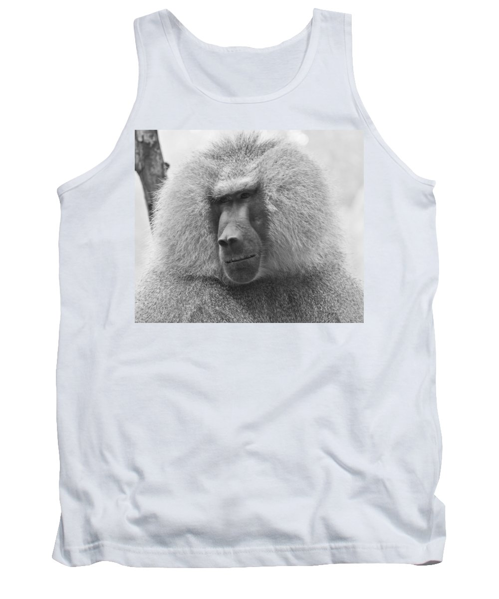 Baboon Tank Top featuring the photograph Baboon In Black And White by Jonny D