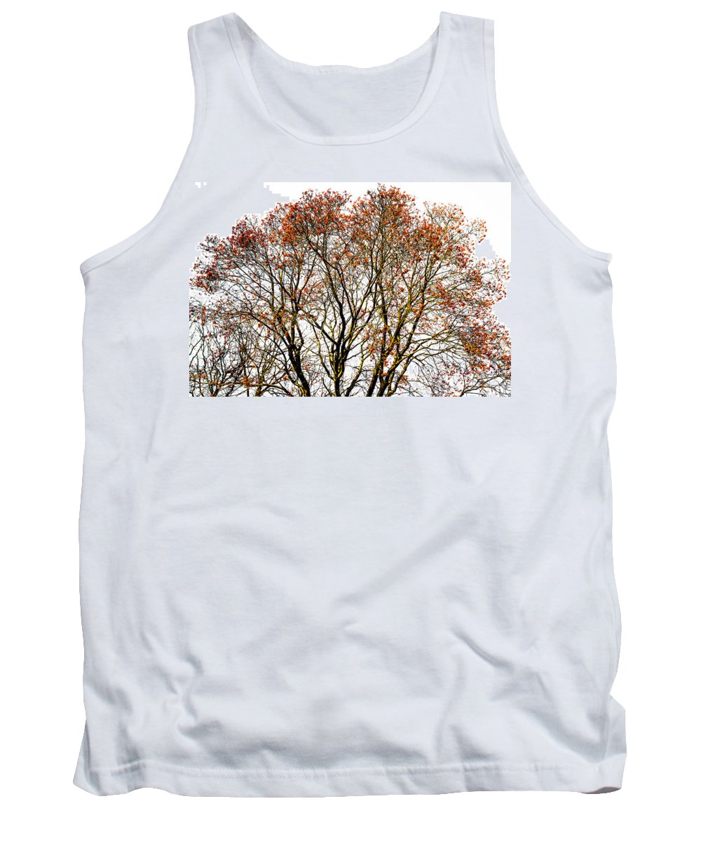 Abstract Tank Top featuring the photograph Beautiful Rowan 11 by Alexander Senin