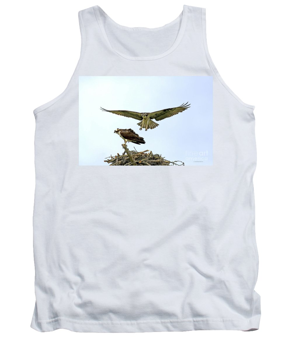 Birds Tank Top featuring the photograph Birds Of Prey by Deborah Benoit