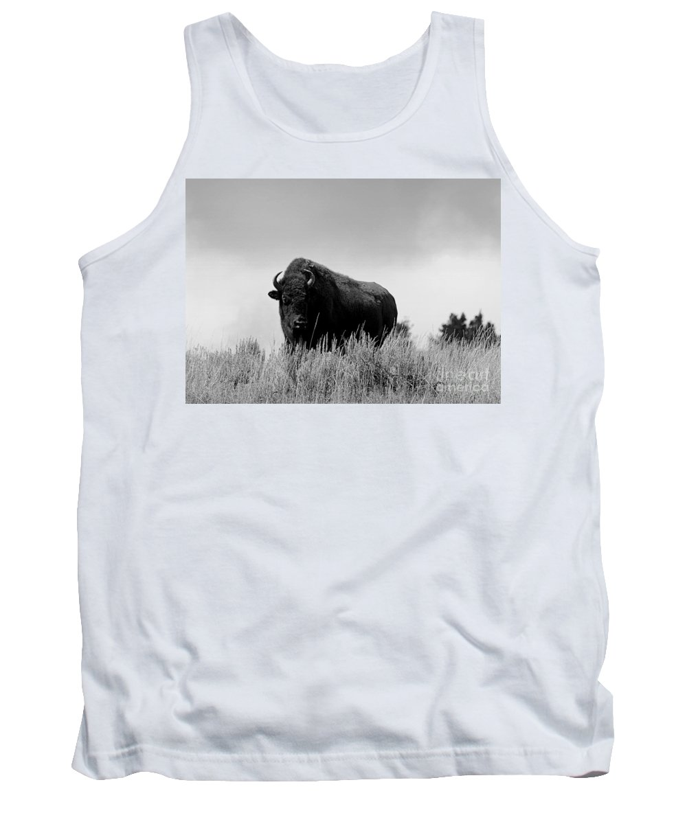 Bison Tank Top featuring the photograph Bison Cow On An Overlook In Yellowstone National Park Black And White by Catherine Sherman