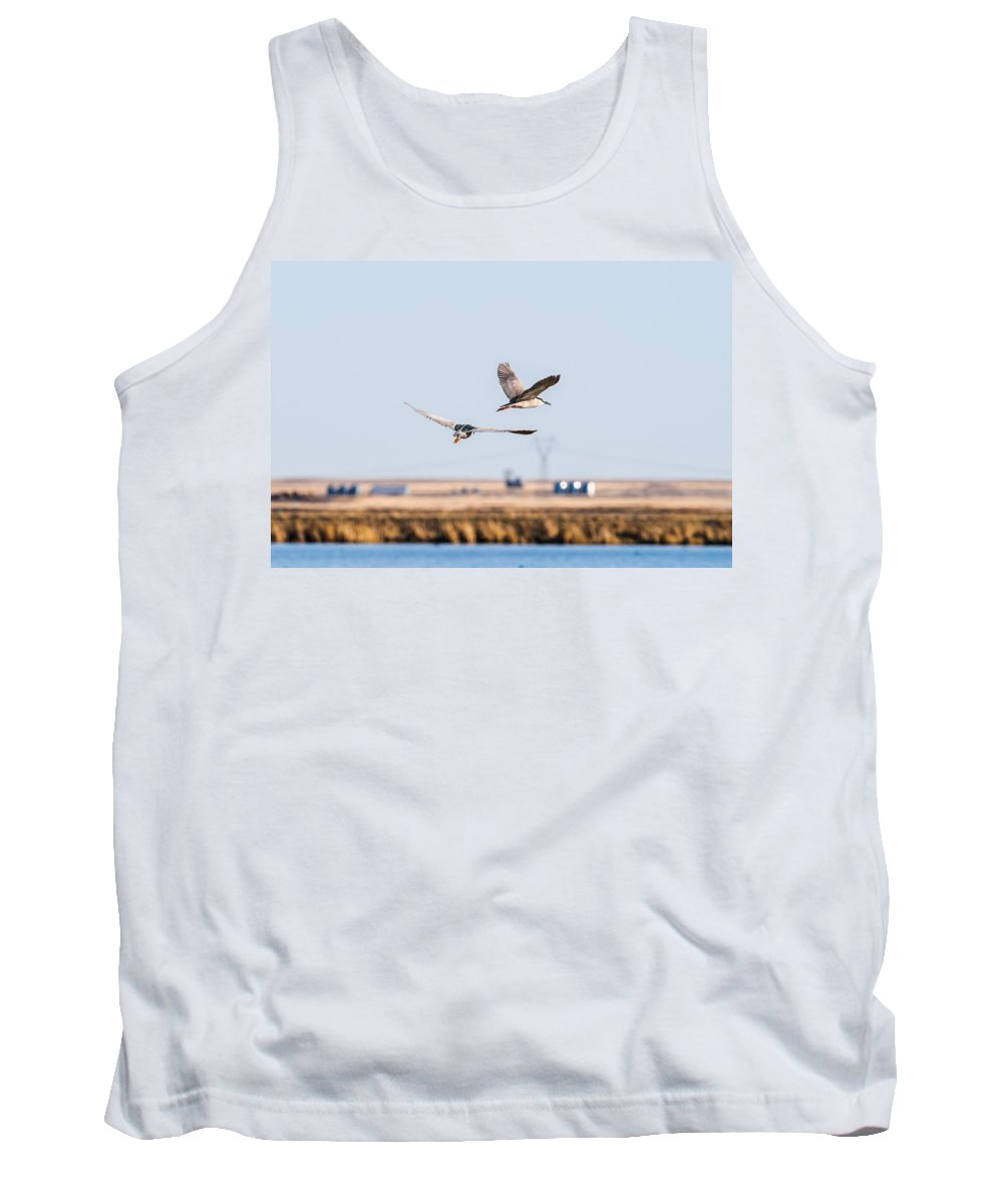 Alberta Tank Top featuring the photograph Black-crowned Night-heron by Brandon Smith