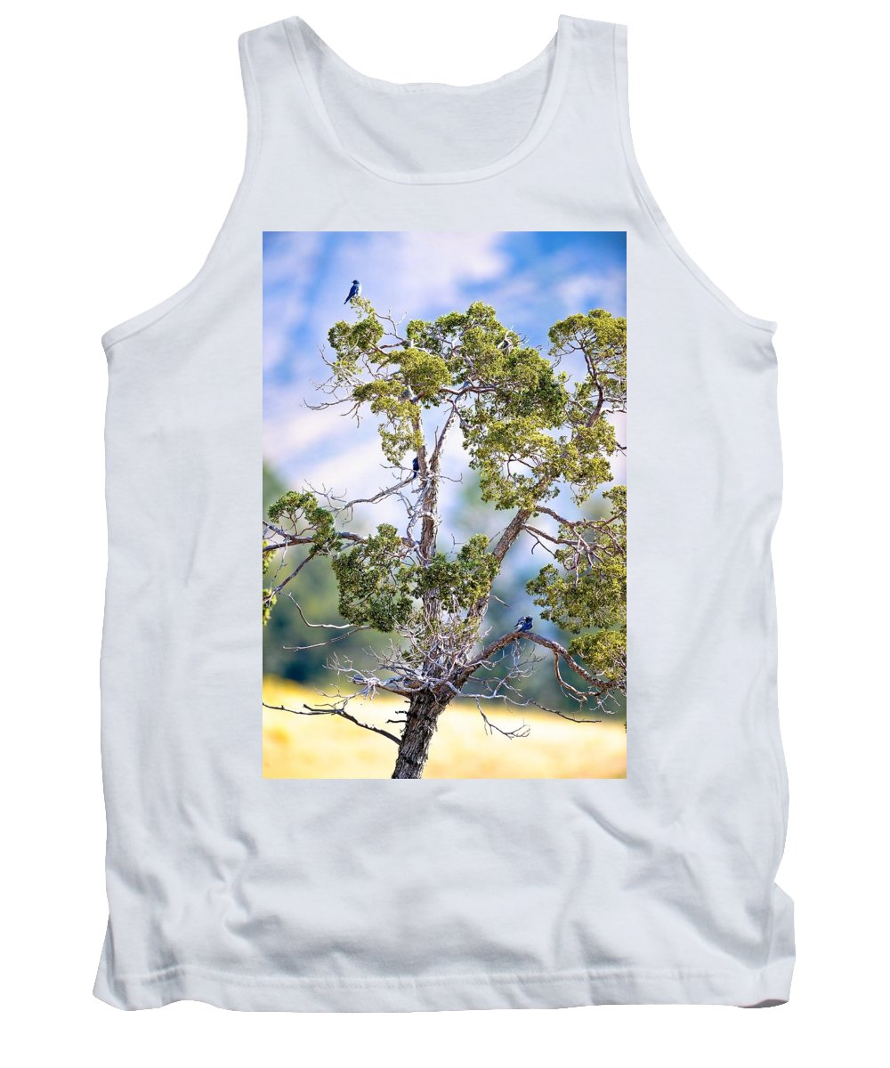 Tank Top featuring the photograph Bluebird Tree by Randy Giesbrecht