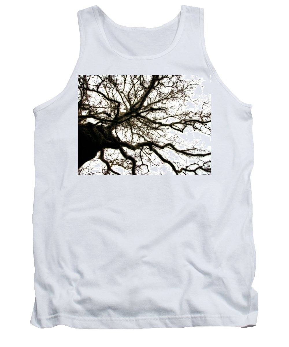Branches Tank Top featuring the photograph Branches by Michelle Calkins