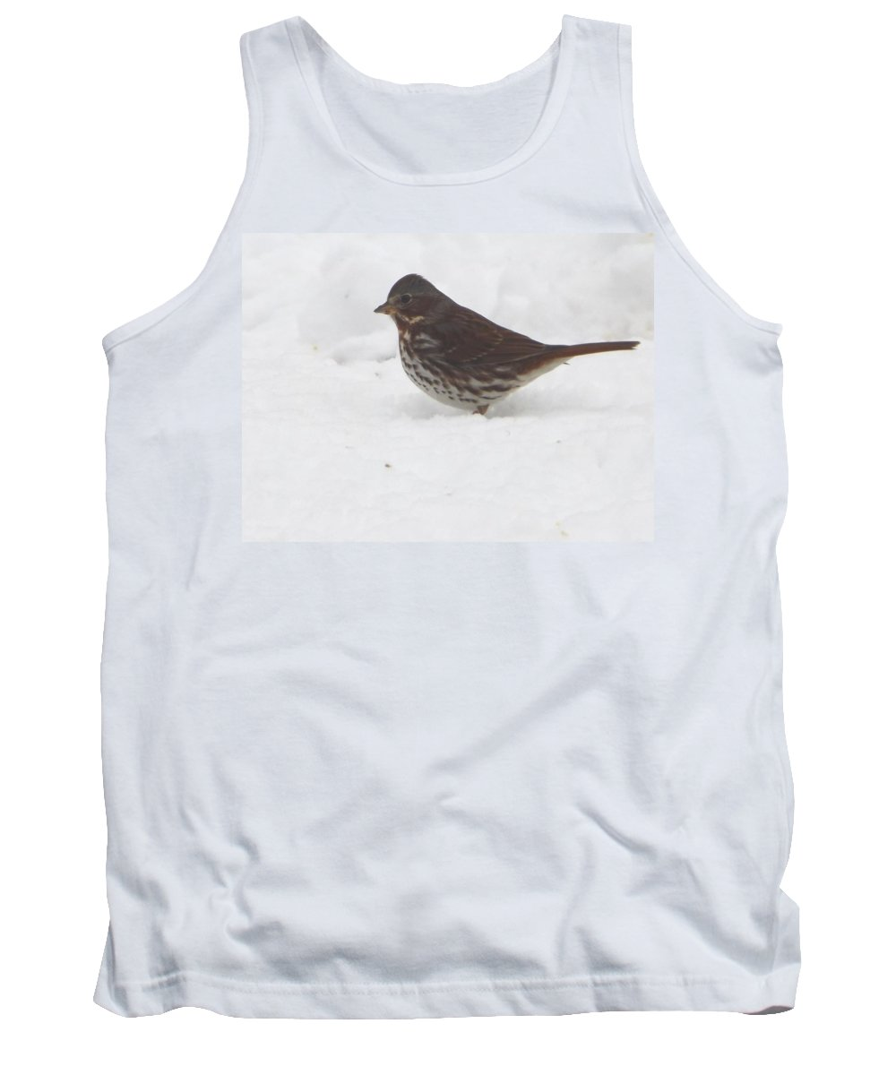 Brown And White Speckled Bird In The Snow Tank Top featuring the photograph Brown And White Speckled Bird In The Snow by Cody Cookston