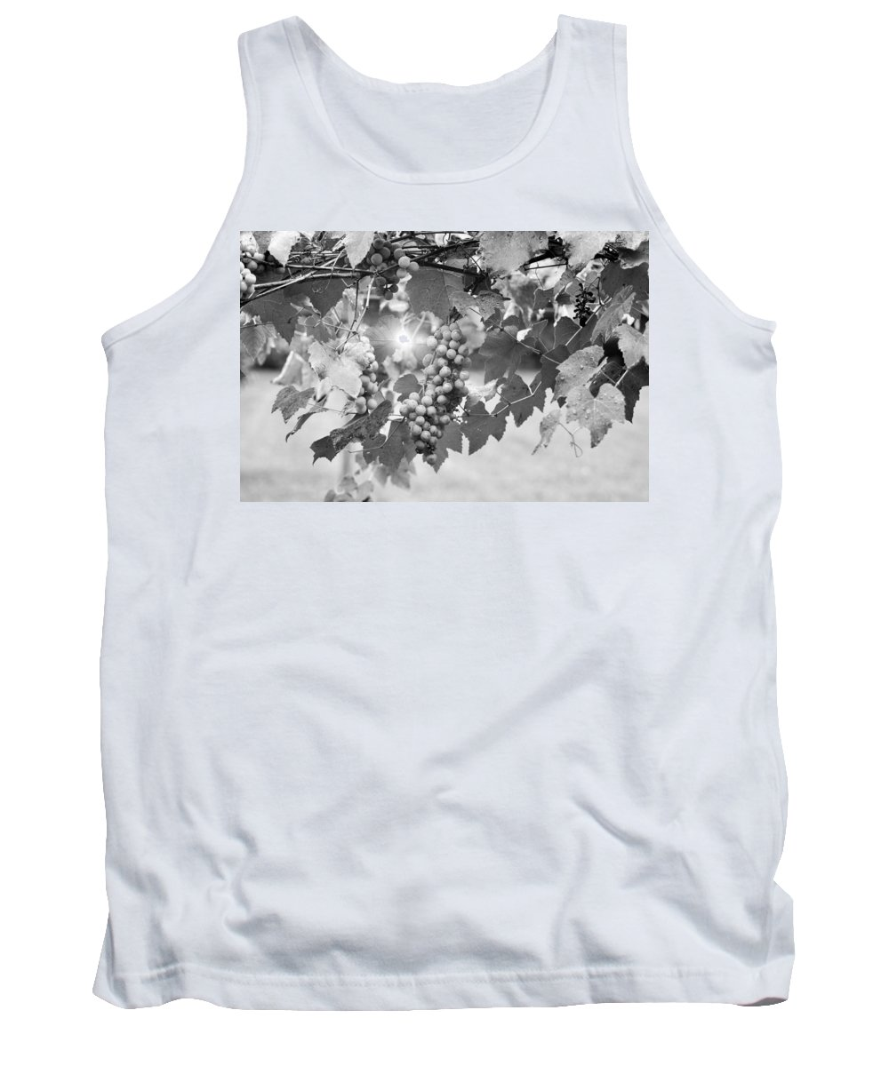 Horizontal Tank Top featuring the photograph Bw Lens Flare Hanging Thompson Grapes Sultana by Sally Rockefeller