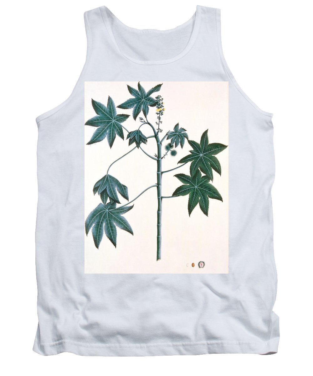 Leaf Tank Top featuring the painting Castor Oil Plant by Indian School
