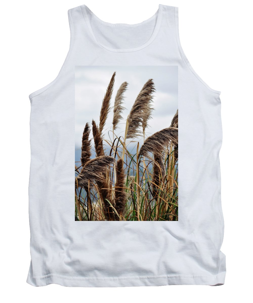 Pampas Grass Tank Top featuring the photograph Central Coast Pampas Grass by Kyle Hanson
