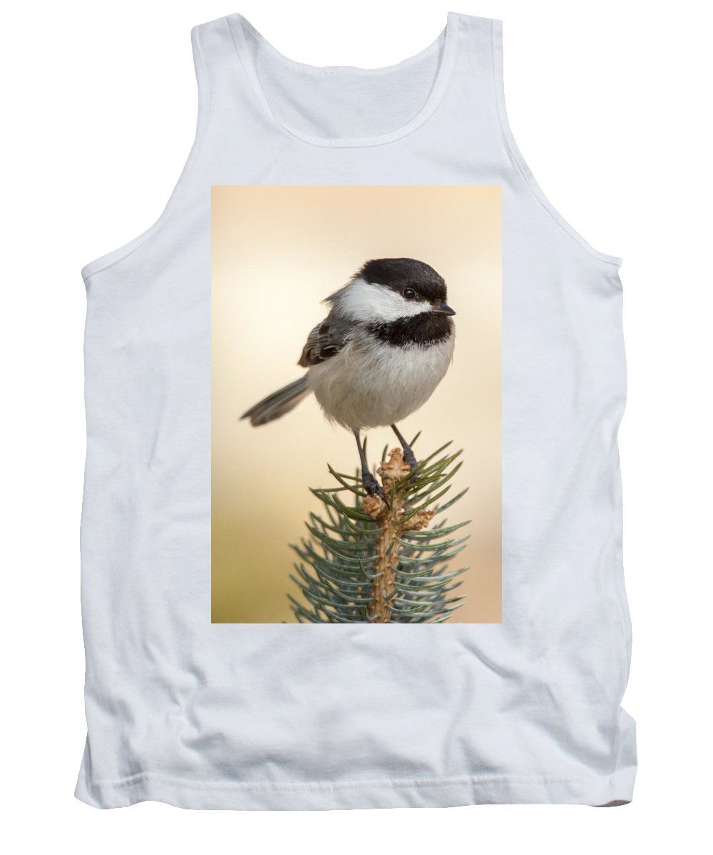 Bird Tank Top featuring the photograph Chickadee Pose by Richard Kitchen
