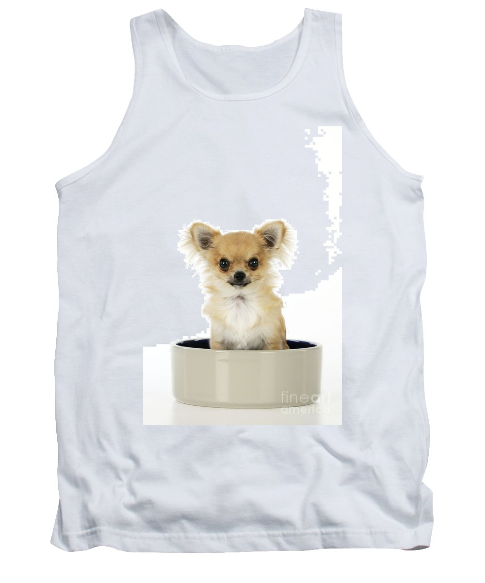 Chihuahua Tank Top featuring the photograph Chihuahua Dog In Bowl by John Daniels