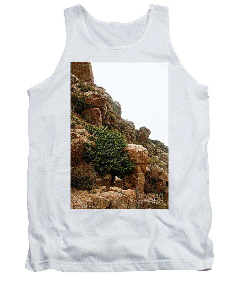 Mountainside Tank Top featuring the photograph Cling Tight by Susan Herber