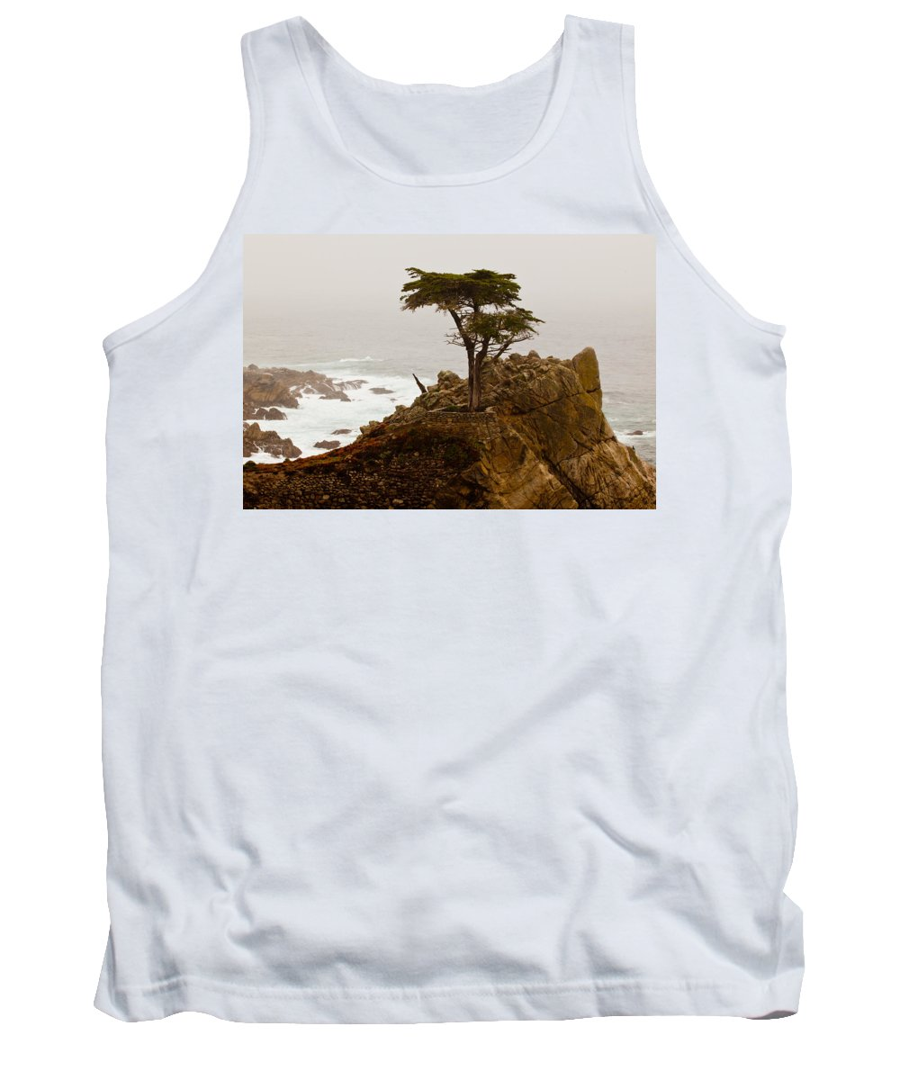 2012 Tank Top featuring the photograph Coastline Cypress by Melinda Ledsome