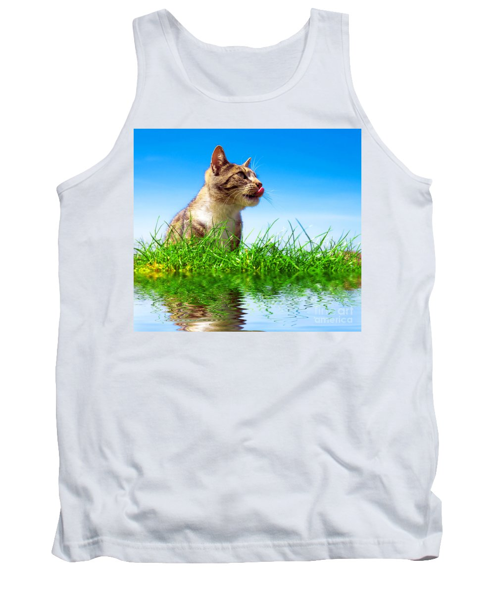 Adorable Tank Top featuring the photograph Cute Cat Outdoor Portait by Michal Bednarek