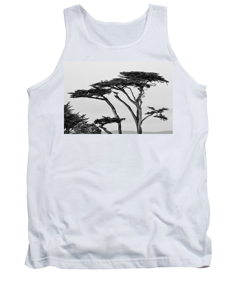2012 Tank Top featuring the photograph Dark Cypress by Melinda Ledsome
