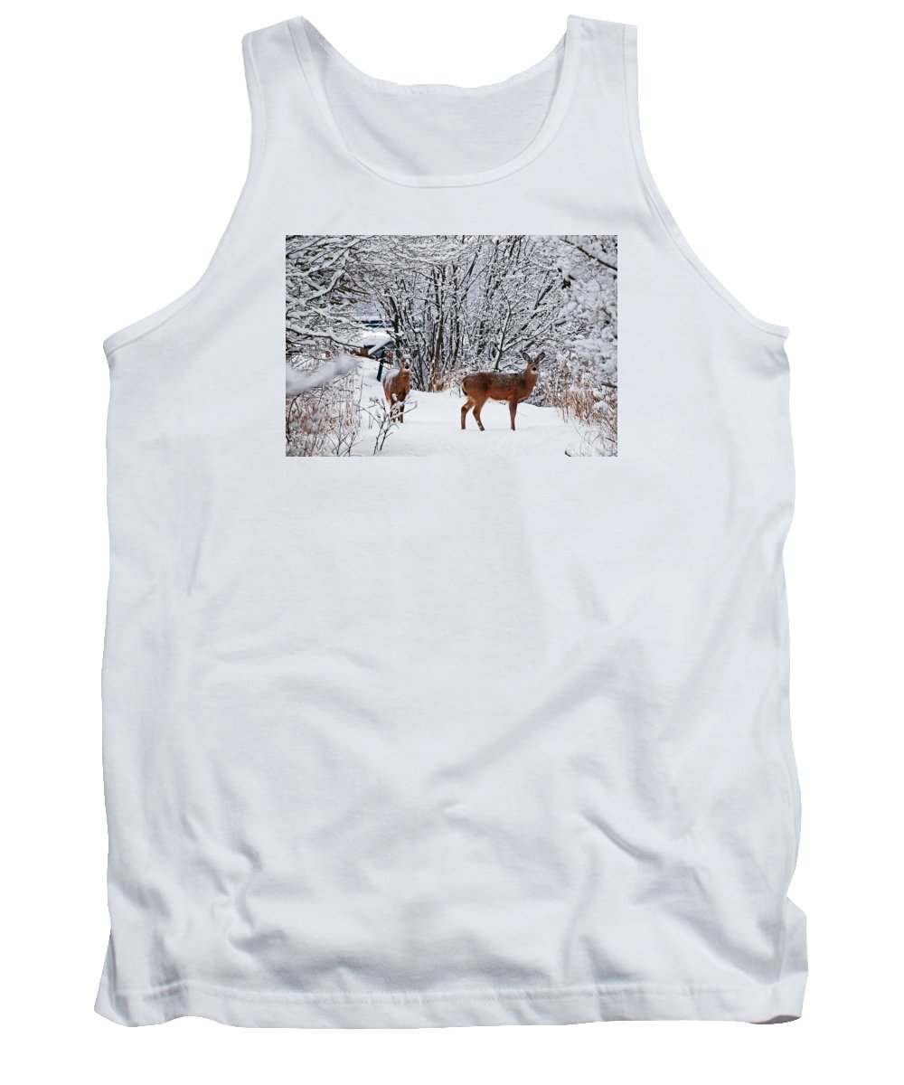 Deer Tank Top featuring the photograph Deers In Winter by FL collection