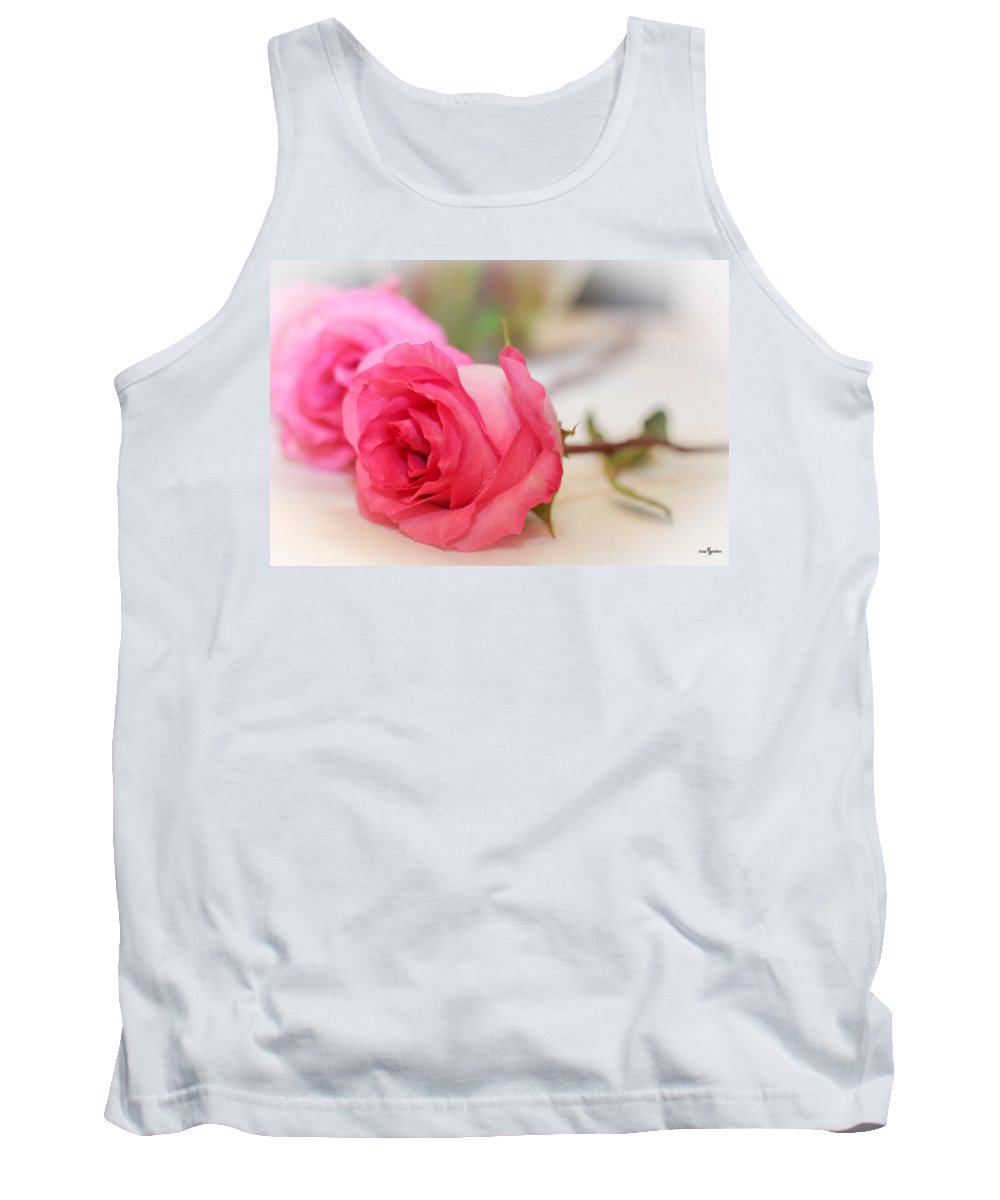 Delicate Rose Tank Top featuring the photograph Delicate Rose by Mechala Matthews