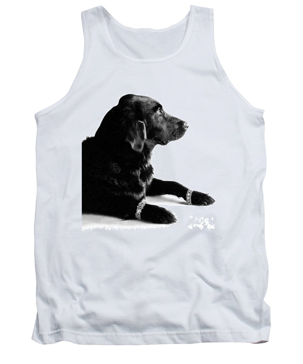 Diamonds Are A Dogs Best Friend Tank Top featuring the photograph Diamonds Are A Dogs Best Friend by Deb Schense