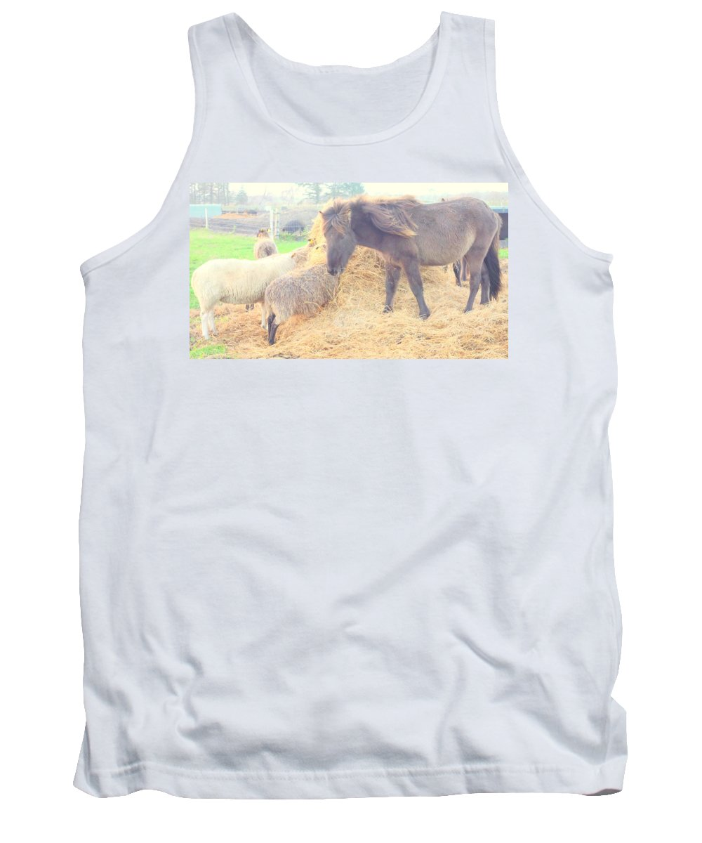 Pony Tank Top featuring the photograph It's Time You Join Us For Dinner by Hilde Widerberg
