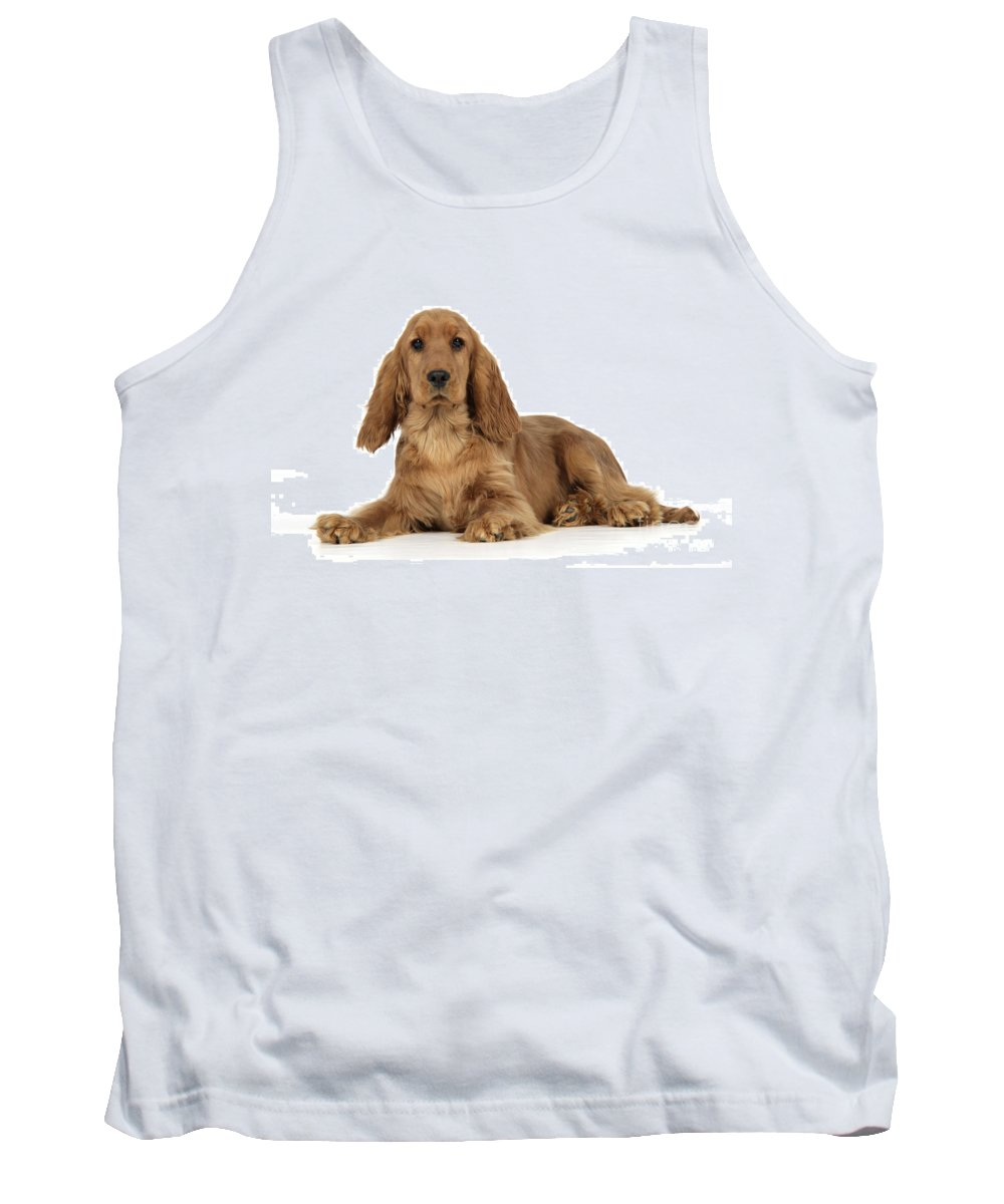 English Cocker Tank Top featuring the photograph English Cocker Spaniel by John Daniels
