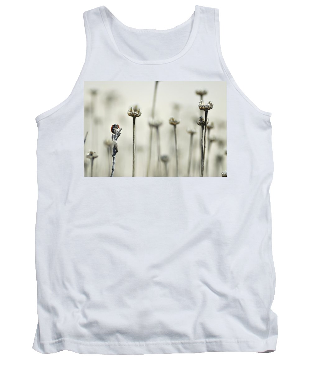National Park Tank Top featuring the photograph Firm by Guido Montanes Castillo