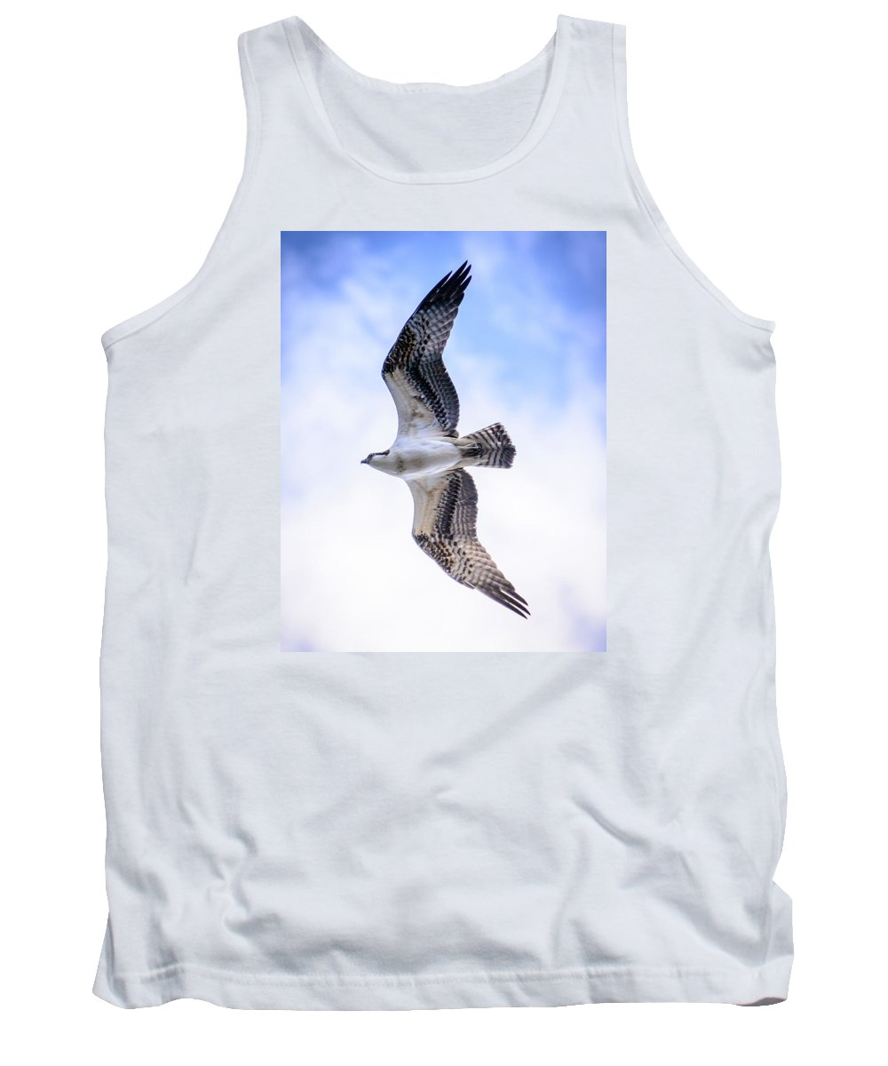 Bird Tank Top featuring the photograph Flying High by Colleen McIntier