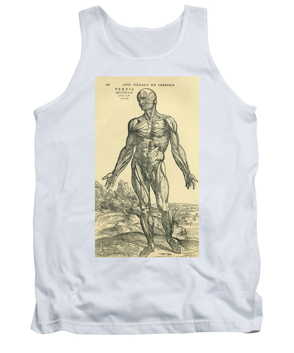 Anatomical Tank Top featuring the photograph Front Of Male Human Body.anatomical by Ken Welsh