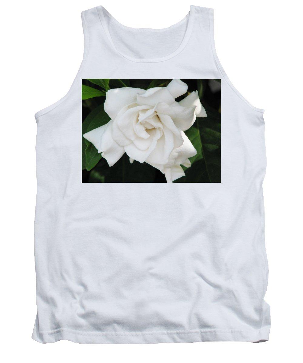 Gardenia Flower Tank Top featuring the photograph Gardenia by Patricia Blake