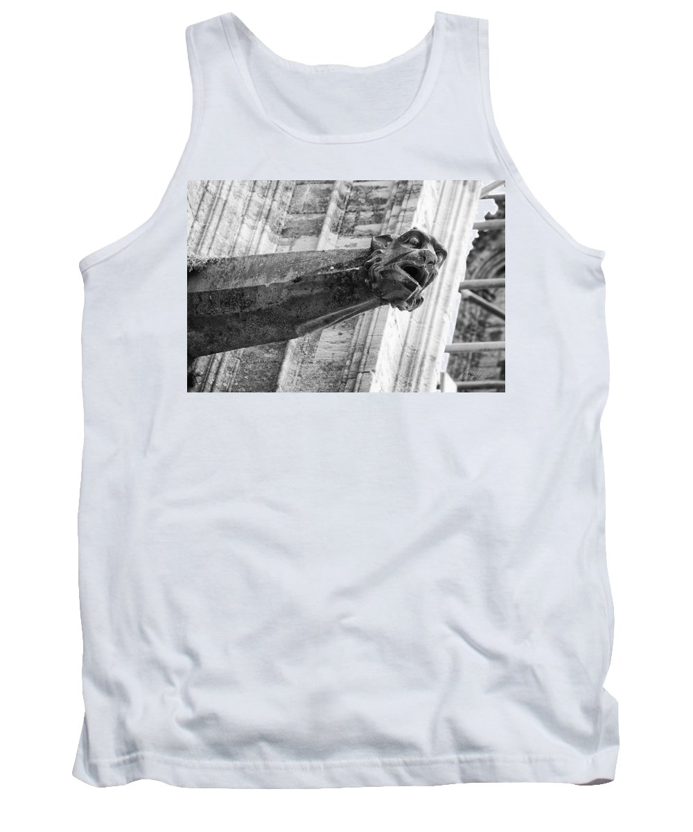 France Tank Top featuring the photograph Gate Keeper by Diana Haronis