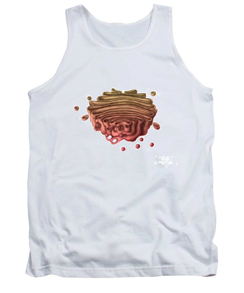 Golgi Apparatus Tank Top featuring the photograph Golgi Apparatus by Spencer Sutton