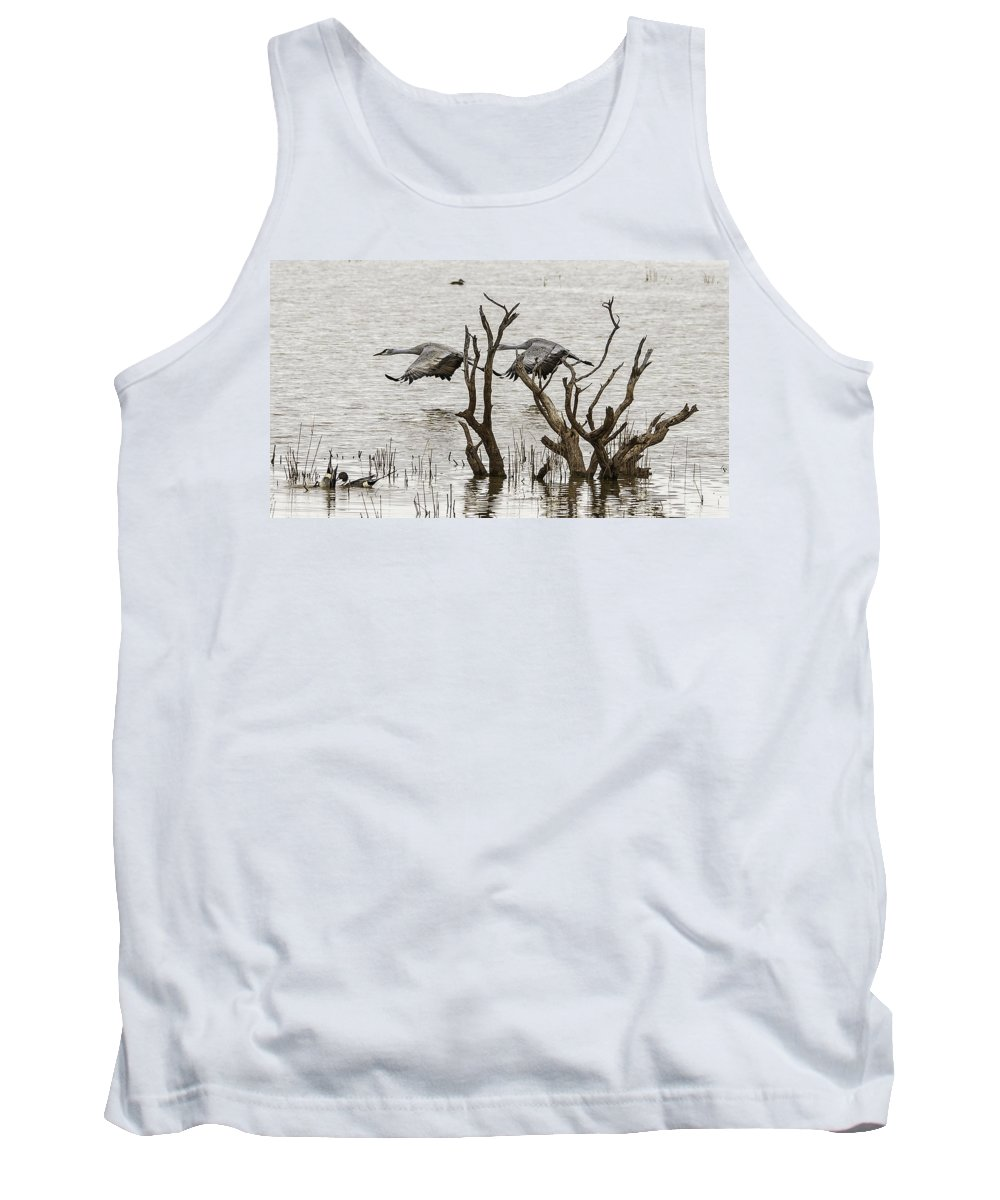 Coons Tank Top featuring the photograph Gray Day At Whitewater by Lorraine Harrington