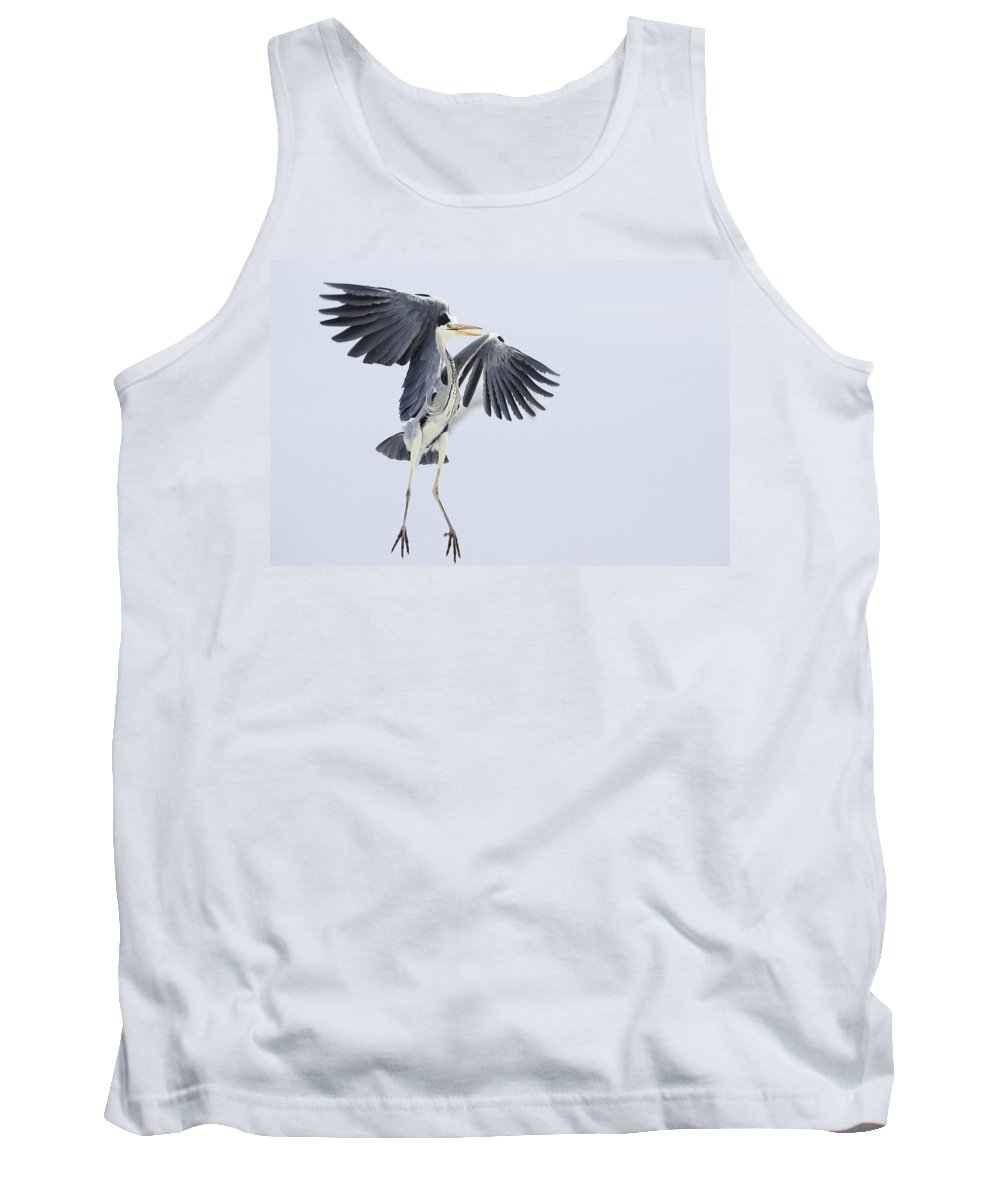 Feb0514 Tank Top featuring the photograph Grey Heron Landing Germany by Konrad Wothe