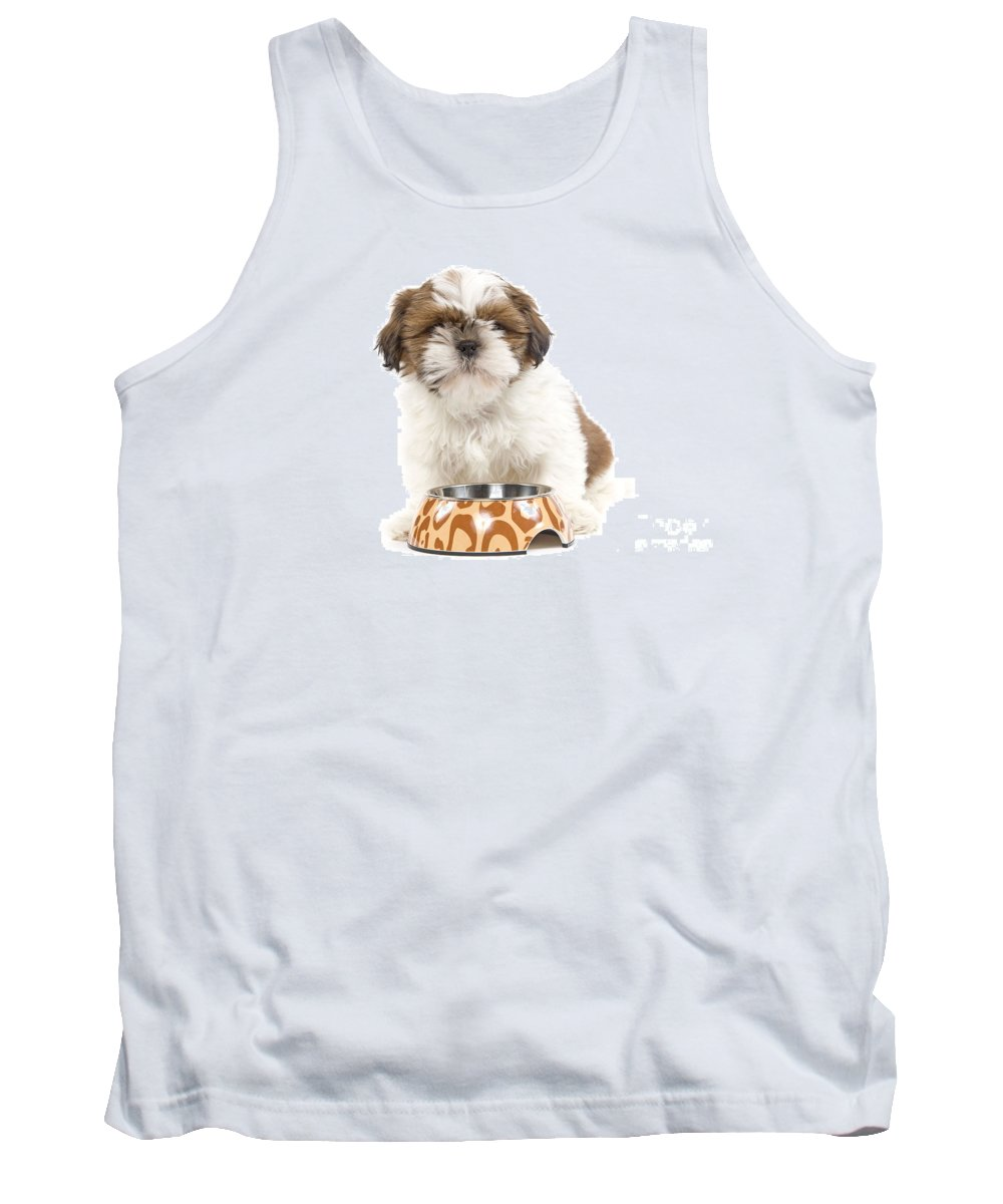Havanese Tank Top featuring the photograph Havanese With Dog Bowl by Jean-Michel Labat
