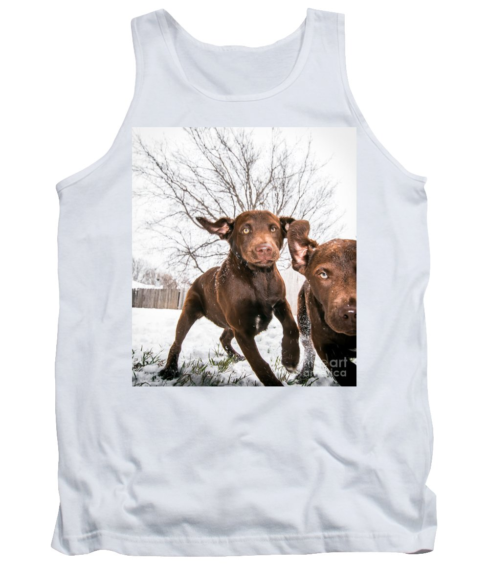 Animal Tank Top featuring the photograph Hellish Thugs Let Loose by Robert Frederick