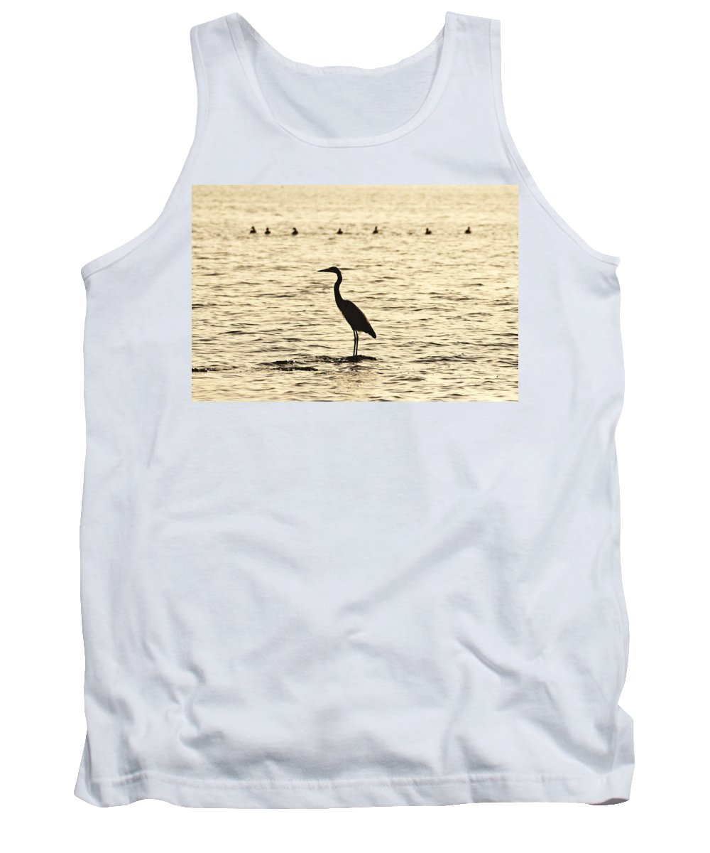 Heron Standing In Water Tank Top featuring the photograph Heron Standing In Water by Bill Cannon