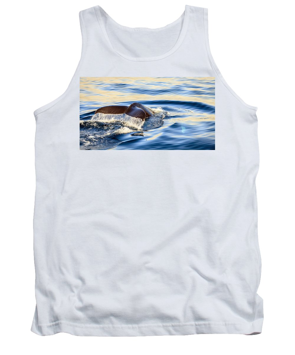 Europe Tank Top featuring the photograph Humpback Whale by Alexey Stiop