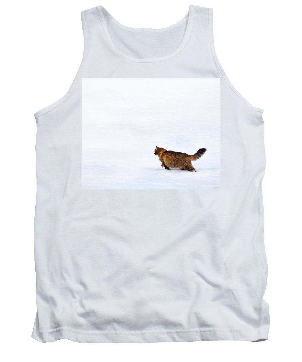 Domestic Cats Tank Top featuring the photograph Hunter At Work by Theresa Tahara