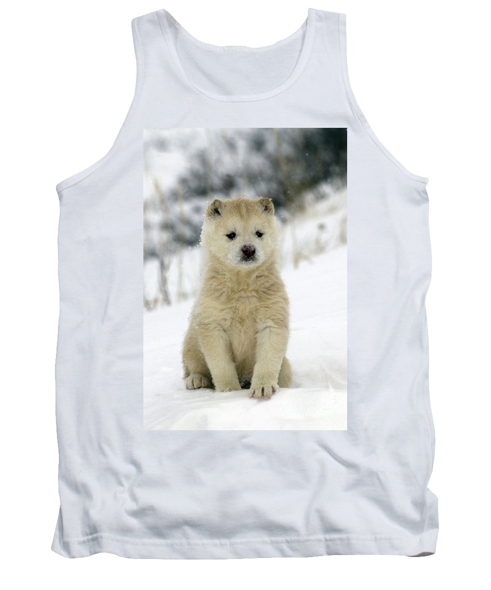 Husky Tank Top featuring the photograph Husky Dog Puppy by M. Watson