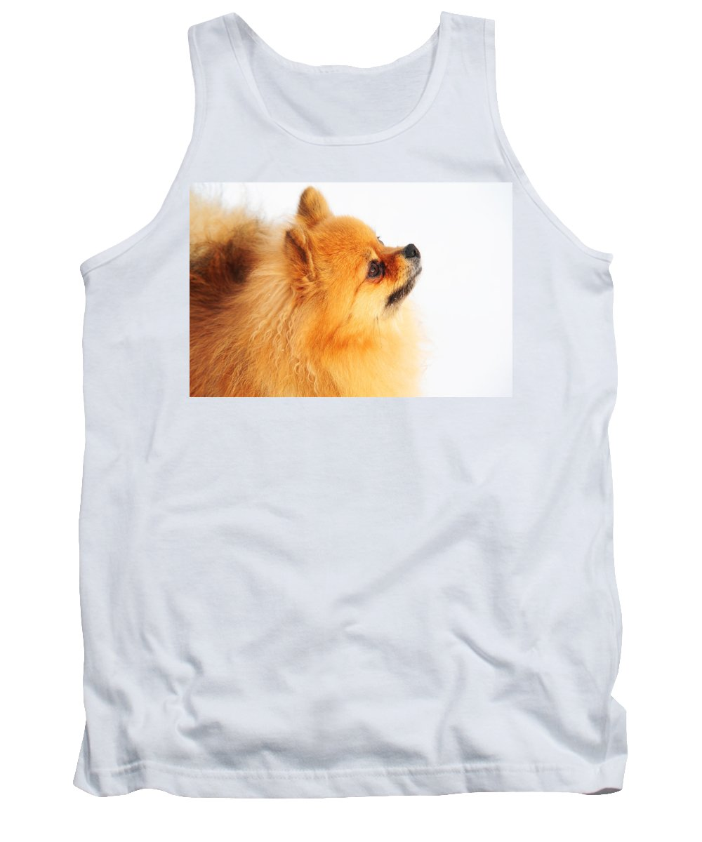 Dog Tank Top featuring the photograph I Am Here by Jenny Rainbow