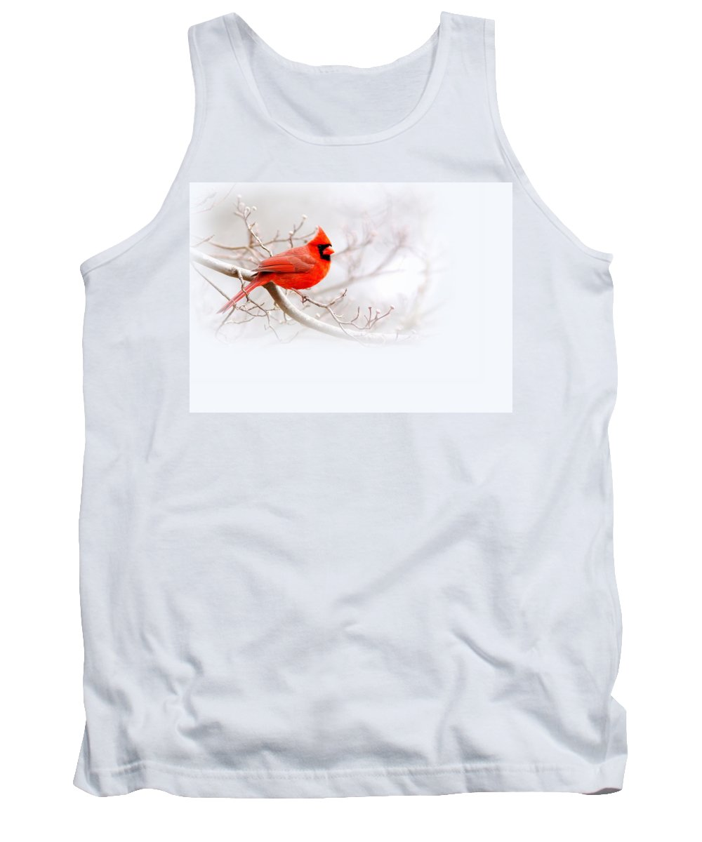 Cardinal Tank Top featuring the photograph Img 2559-10 by Travis Truelove
