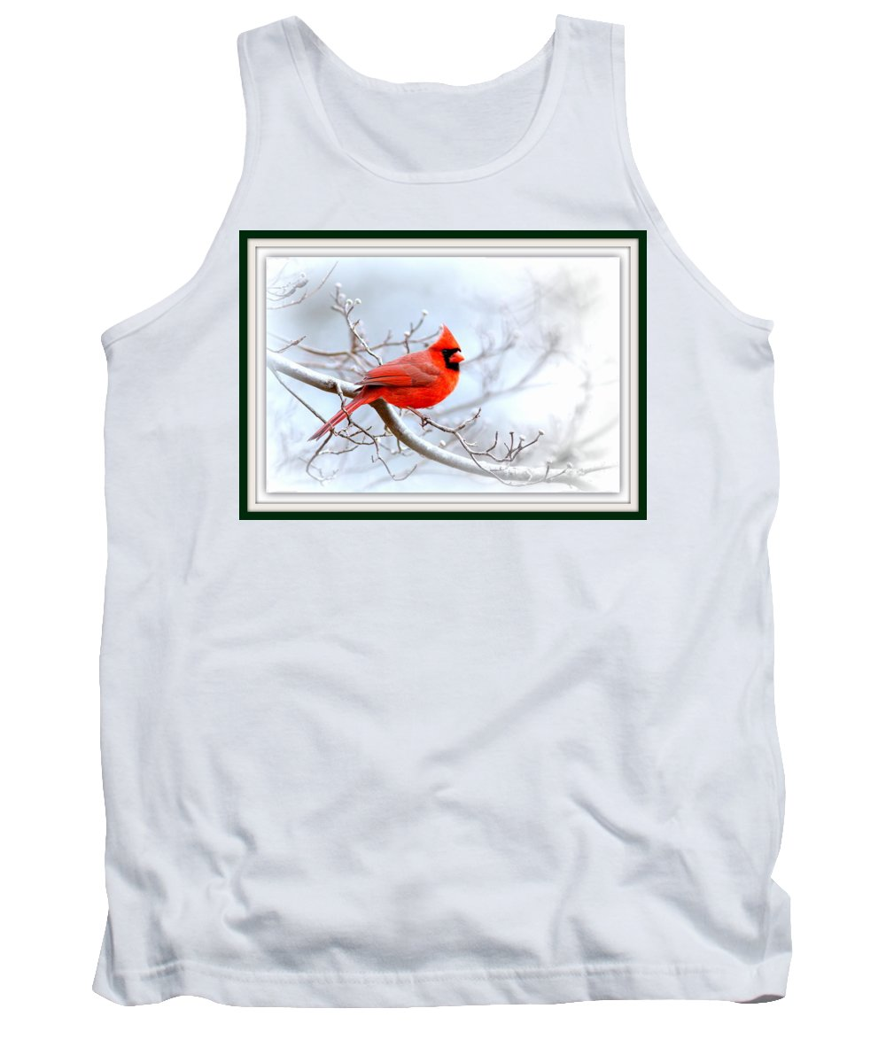 Cardinal Tank Top featuring the photograph Img 2559-15 by Travis Truelove