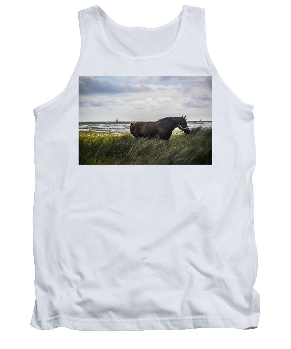 Horse Tank Top featuring the photograph In The Tall Grass by Paula OMalley