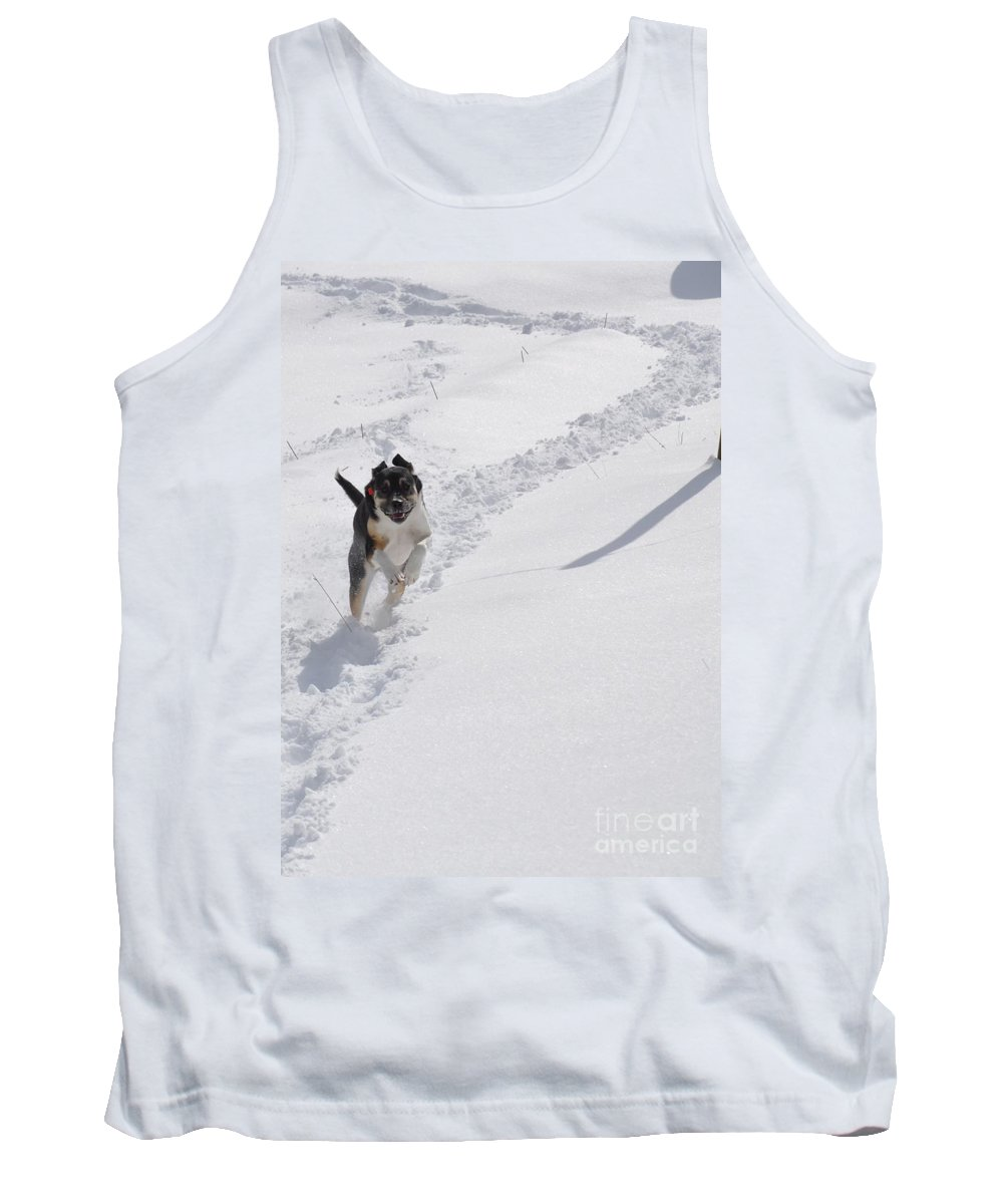 Dog Tank Top featuring the photograph Joy Of Snow by Christina McKinney