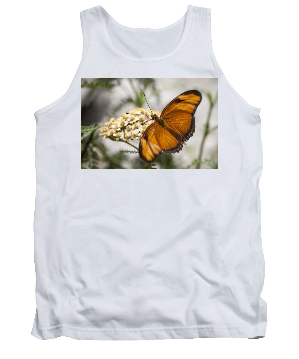 3scape Photos Tank Top featuring the photograph Julia Butterfly by Adam Romanowicz