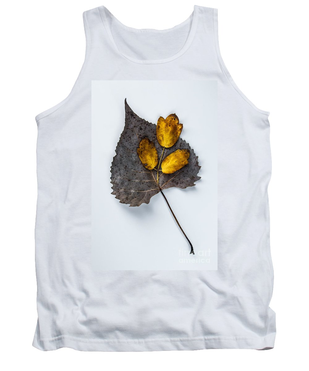 Leaves Tank Top featuring the photograph Leaf Study by Michael Arend