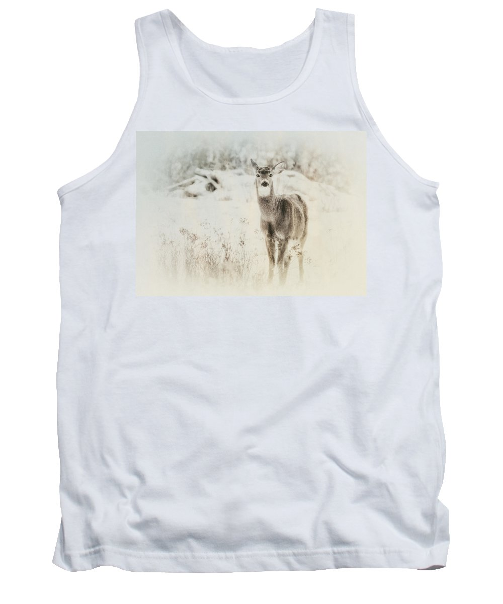 Deer Tank Top featuring the photograph Listen by Susan Capuano