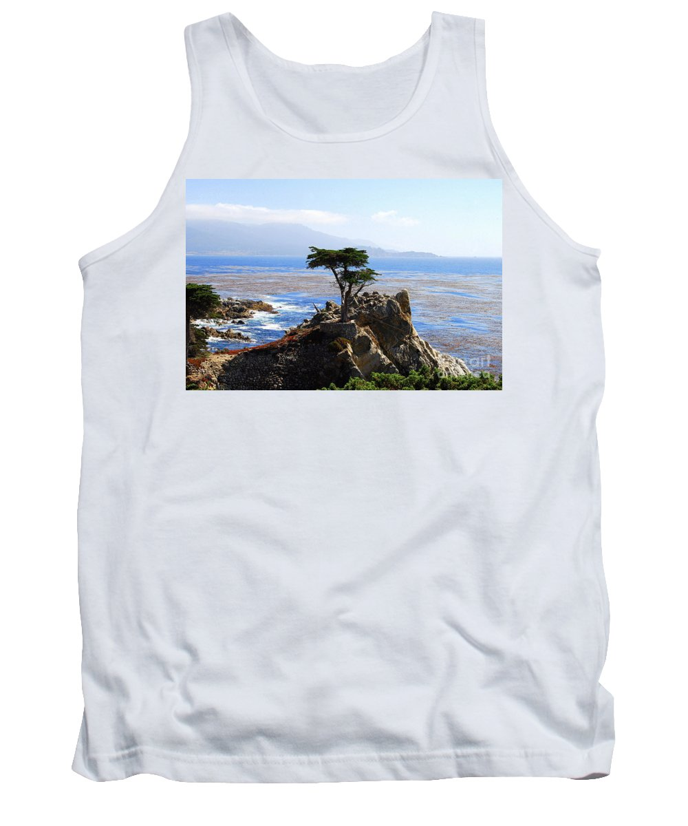 Cypress Tank Top featuring the photograph Lone Cypress Tree In Monterey In California by Catherine Sherman