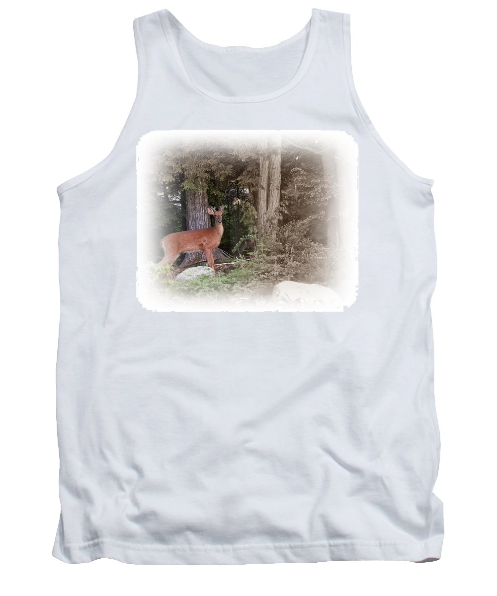 Male Deer Tank Top featuring the photograph Male Whitetail Deer by MTBobbins Photography