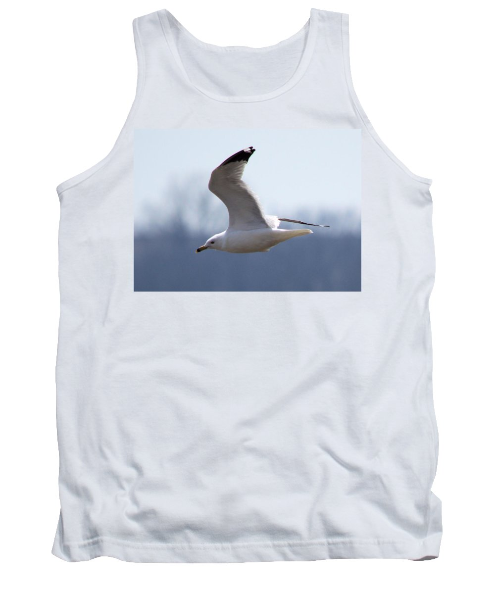 Gull Tank Top featuring the photograph Marsh Gull by Bonfire Photography